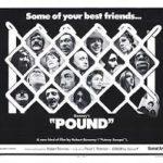 pound movie poster image