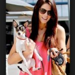 Ashley Greene pet dog