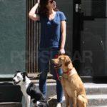 Emily Blunt pets
