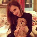 Emma Watson with her pet dog