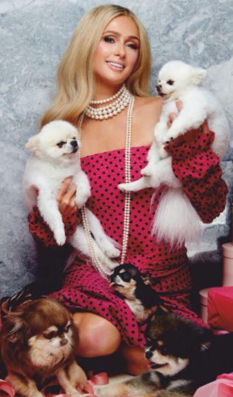 Paris Hilton with her pets