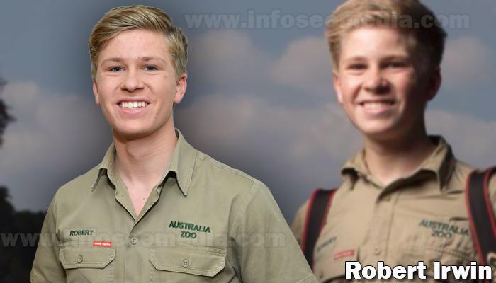 Robert Irwin featured image