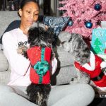 A'ja Wilson with her pet dogs