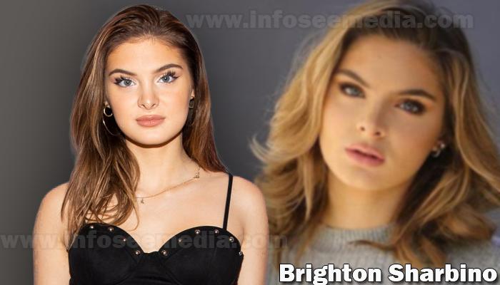 Brighton Sharbino featured image